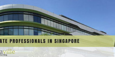 Real Estate Professionals in Singapore